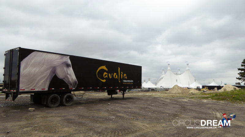 Cavalia (ODYSSEO) - Montreal (CAN) 2015
