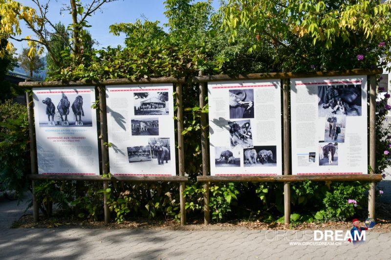 Knies Kinderzoo - Rapperswil-Jona 2020