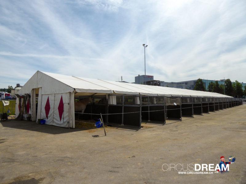Schweizer National-Circus Knie (100 Jahre) - Bern BE 2019