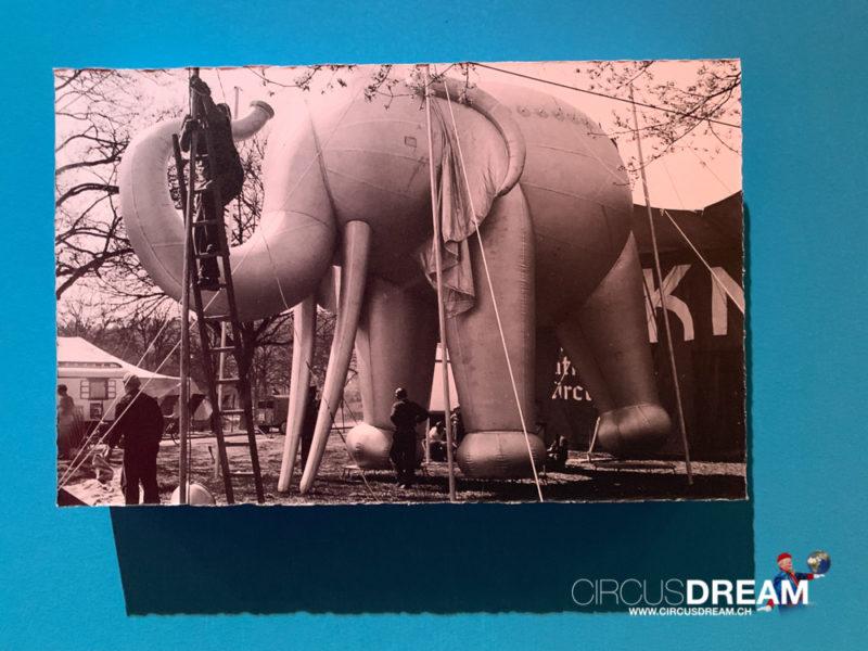Schweizer National-Circus Knie (Mode im Zirkus) - St.Gallen SG 2