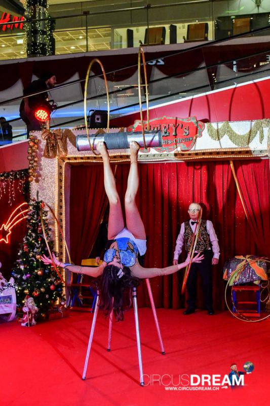 Steys Weihnachtszirkus - Kriens LU 2019