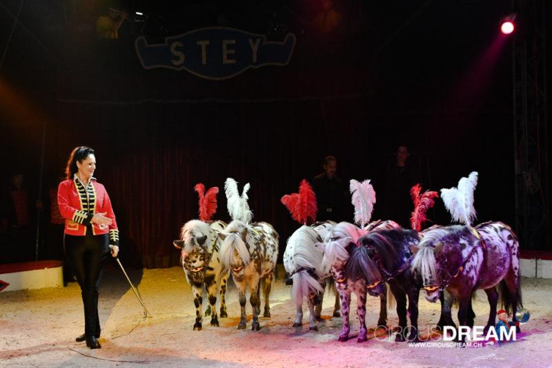 Zirkus Stey (Fantasy) - Steckborn TG 2019