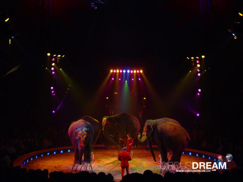 Schweizer National-Circus Knie - Rapperswil-Jona SG 2004