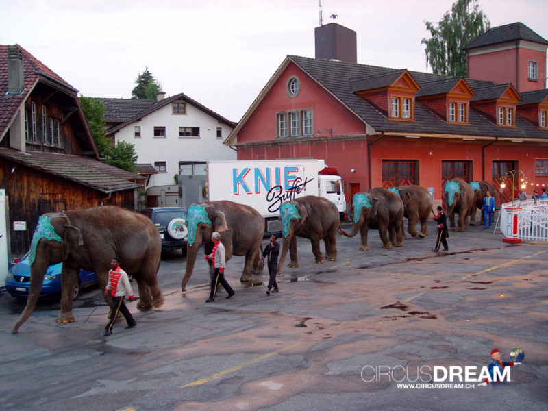 Schweizer National-Circus Knie - Langenthal BE 2003