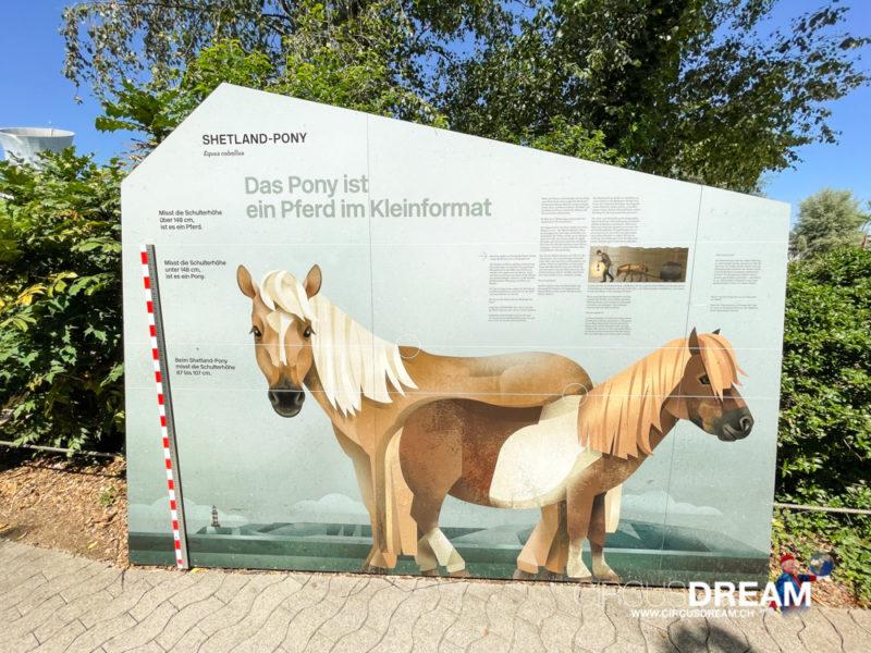 Knies Kinderzoo - Rapperswil-Jona (SG) 2021